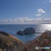 岩島を眺めて