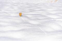 ダンボー君、雪だるまをつくるの3