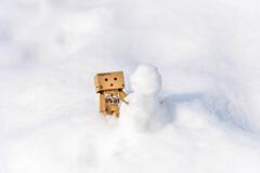 ダンボー君、雪だるまをつくるの2