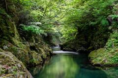 仙見川渓谷