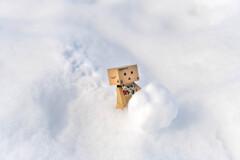 ダンボー君、雪だるまをつくるの1