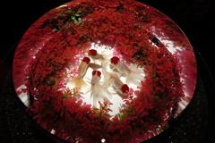 アートアクアリウム 熊本城ホール