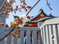 樽前山神社(3)