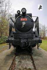 D61 3(3)