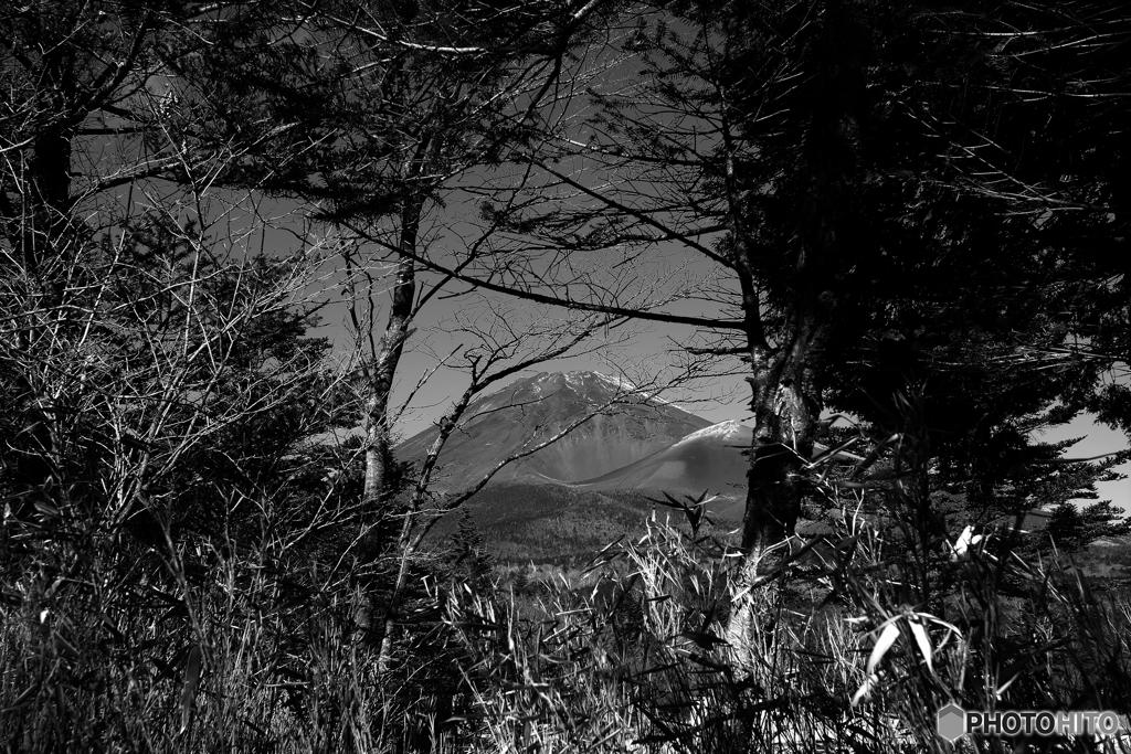 水ケ塚公園からの富士