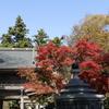 高尾山 薬王院 2020.11.11