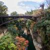 甲斐の猿橋から撮影02 2020.11.19