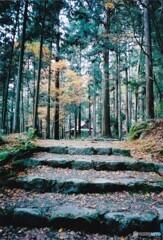 秋の高山寺 ④
