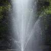湧水の公園-⑨