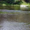 湧水の公園-➅