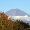 今日の富士山を田貫湖から望む-③