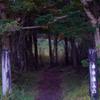 トトロの森へいざなう-①