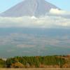 今日の富士山を田貫湖から望む-➄