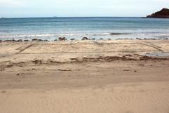 弓ヶ浜ウオーキング200527-⑥