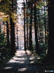 秋の高山寺 ⑦