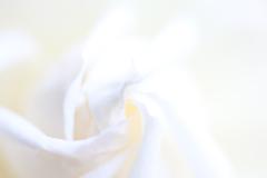 Ondulation Blanche ④