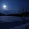 雪原の満月