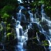 知床 オシンコシンの滝2