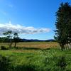 収穫後畑と青空