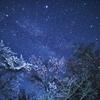 夜桜と星空