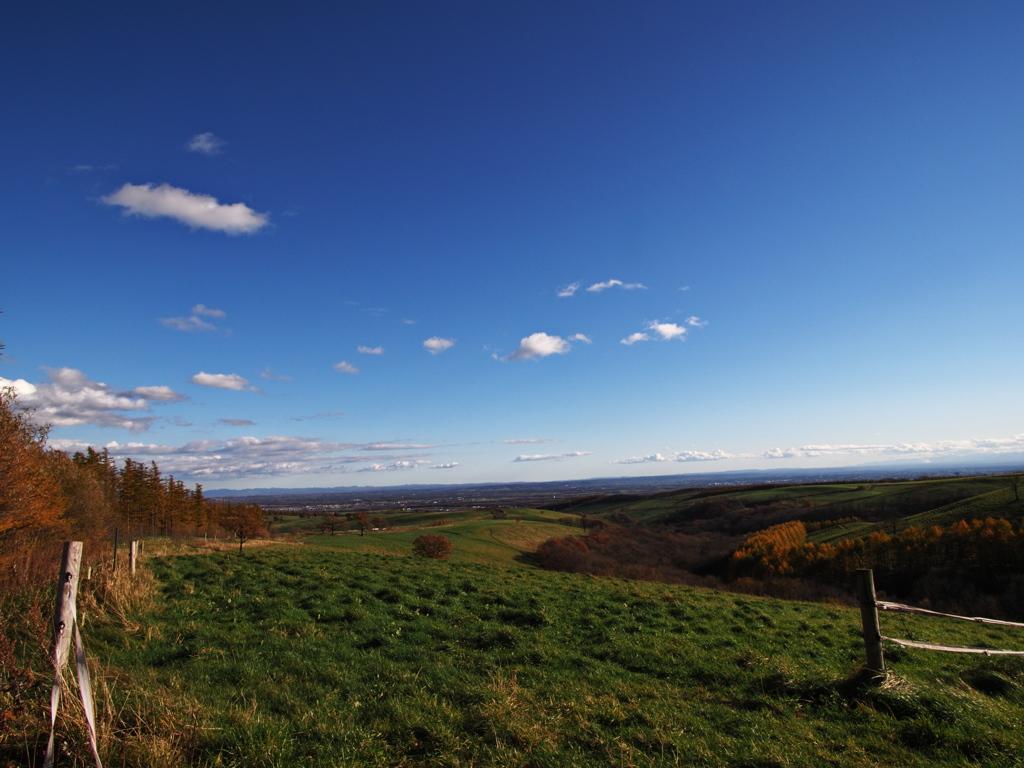 秋の牧場風景