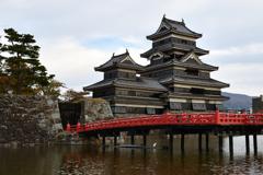 松本城とコサギ(橋の下)