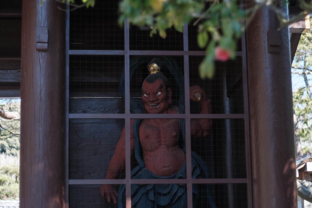 鎌倉・高徳院(大仏殿)2