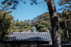 鎌倉・高徳院(大仏殿)