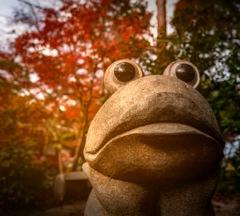 ゆく秋 おしむ。。