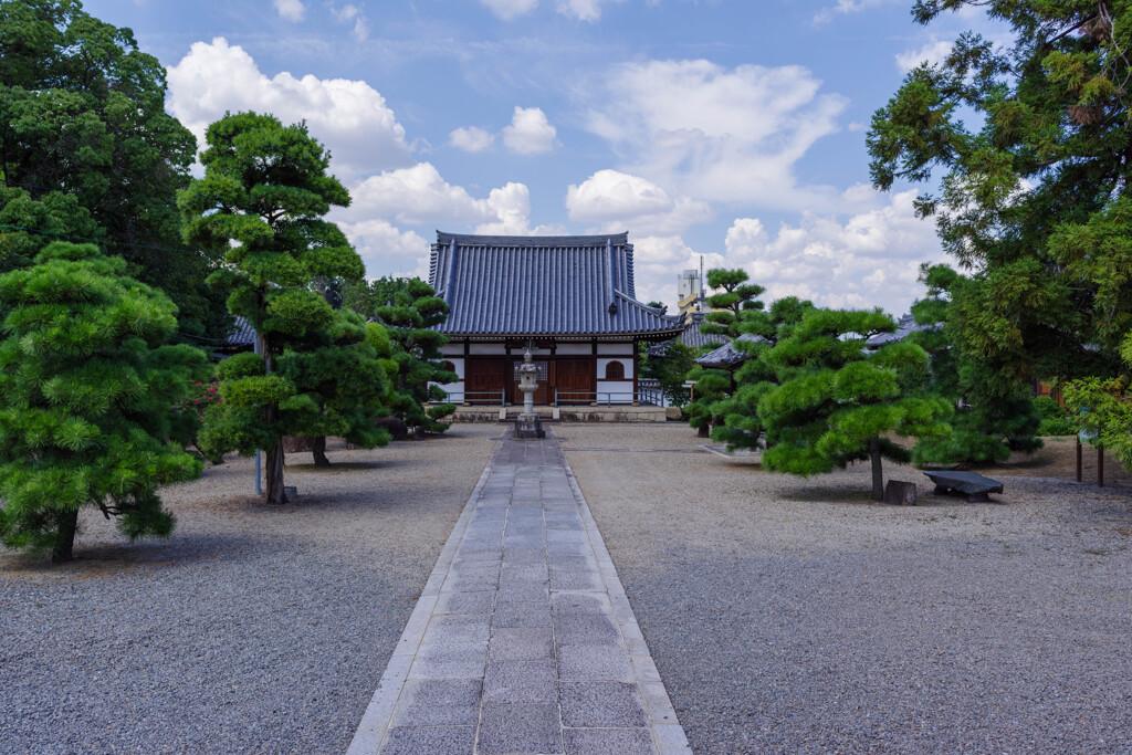 大阪府羽曳野市野中寺3