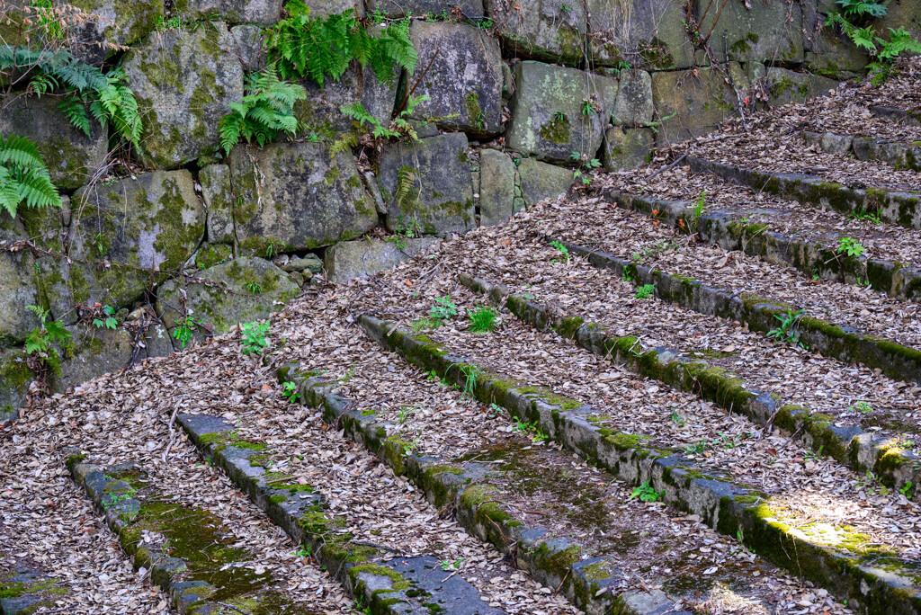大阪城石階段に積もる落ち葉