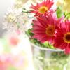心に花を☆*: .。.