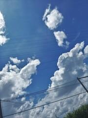 暑さこそ夏ですが、もうこういう雲は見かけませんね。