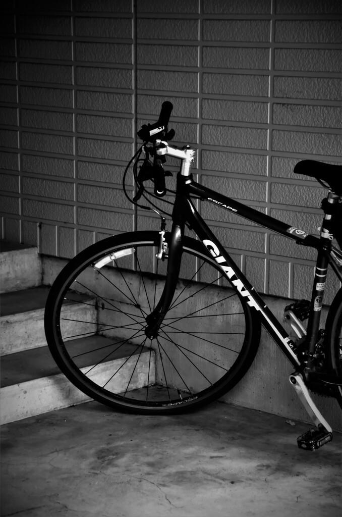 入り口に置かれた自転車
