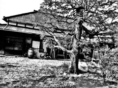 豪農の屋敷