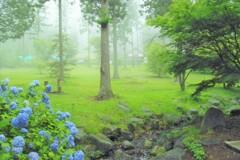 12年前の7月:高原