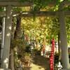 参道の鳥居:弥生神社