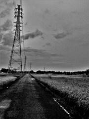 送電鉄塔に沿う道