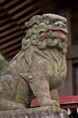 川尻八幡宮の狛犬。