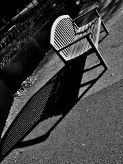 ベンチの影、ながい影。