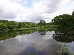 ひろ~い日本庭園