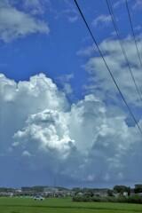 今日の昼。朝は強い雨、お昼は快晴、そして午後は小雨と曇り。