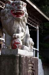 磯部八幡宮の狛犬
