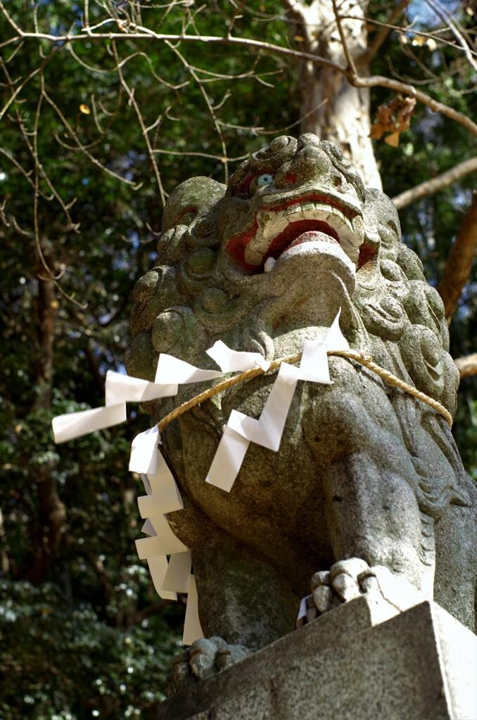 地神社:狛犬の注連縄付き