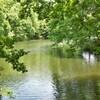 震生湖 7