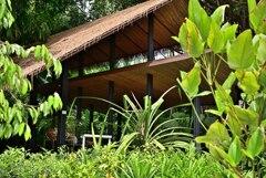 Botanic Garden 3 (2)_00001