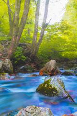 神庭の滝の渓流