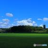 夏空×稲緑×五重塔