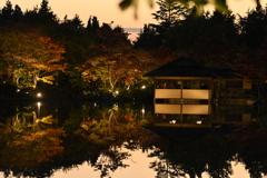 DSC_5443昭和記念公園