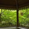 三滝寺 緑に囲まれて